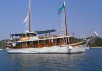 Traditional cruising ship Delija