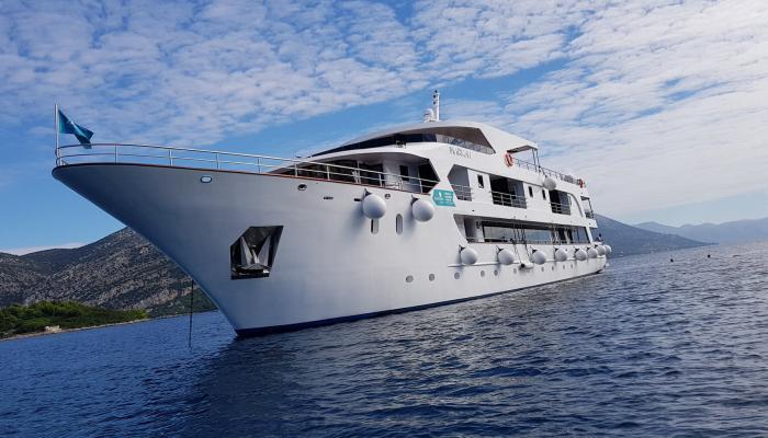 Deluxe Superior cruiser MV Markan