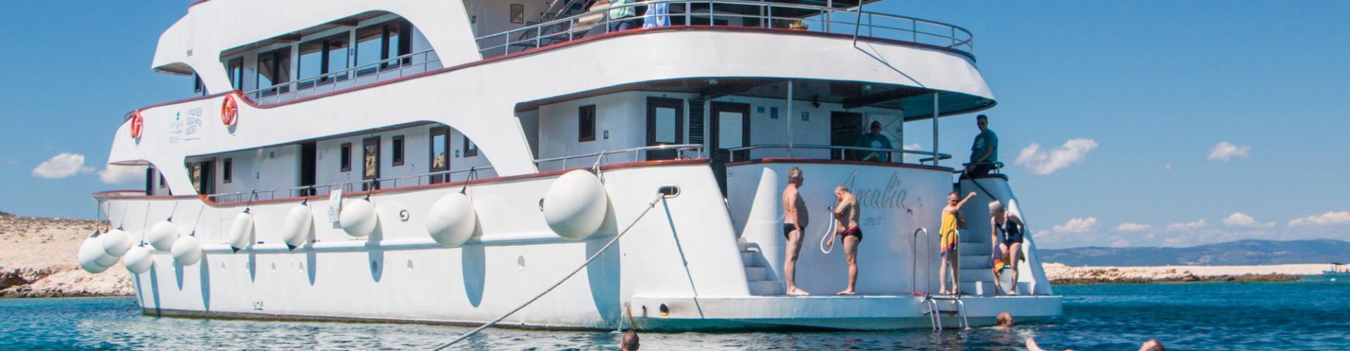2013. Premium Superior cruiser MV Amalia