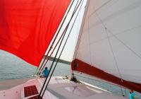 skipper on bow bowman trimaran neel 45 sails sailing deck 1