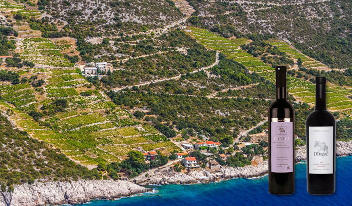 Peljesac - Dingac and Postup wineyards