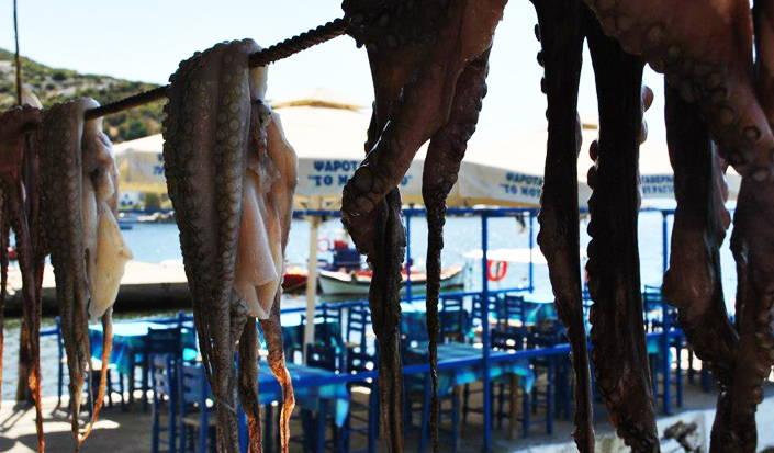 Agia Kiriaki-Griechenland, Trocknen Tintenfische auf der Sonne